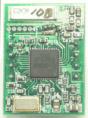 BTX025-2.png